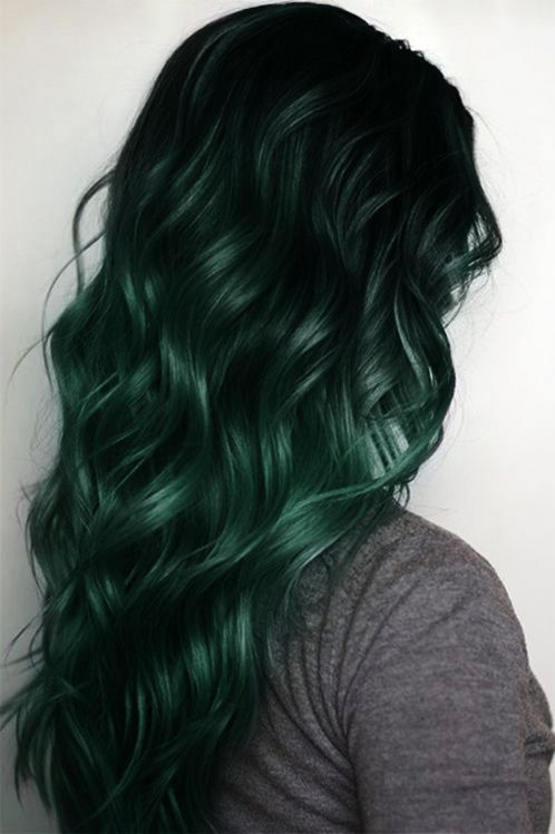 Iguana Green And Black