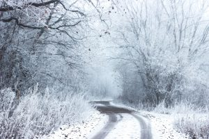 Top 3 Skin Survival Tips for Winter